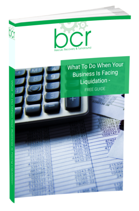 What To Do When Your Business Is Facing Liquidation Guide Cover.png